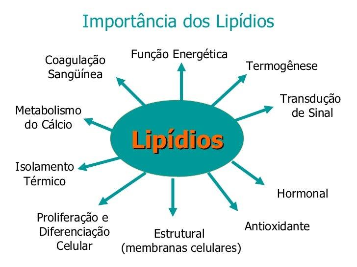 tipos esteroides injetaveis