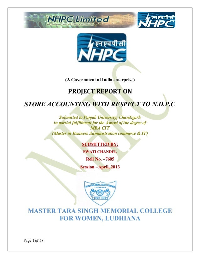 Nhpc project-parbati 2 on store accounting (finance)