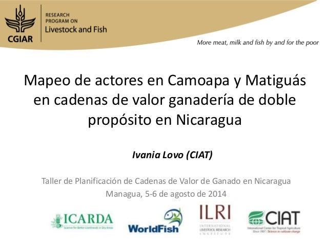 Mapeo de actores en Camoapa y Matiguás en cadenas de valor ganadería de doble propósito en Nicaragua Taller de Planificaci...