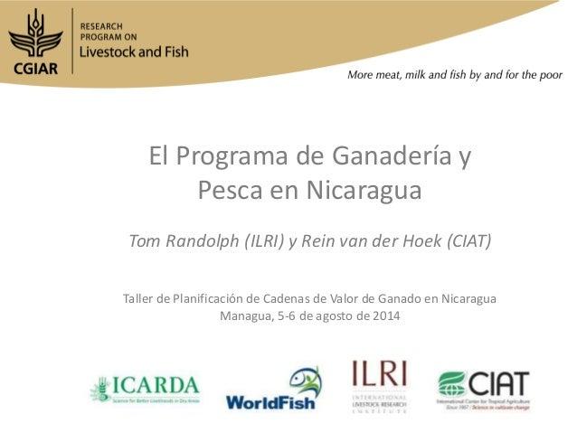 El Programa de Ganadería y Pesca en Nicaragua Tom Randolph (ILRI) y Rein van der Hoek (CIAT) Taller de Planificación de Ca...