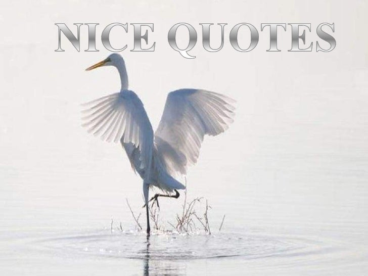 Nice Quotes 1