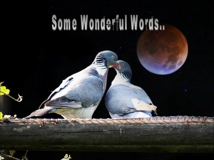Some Wonderful Words..