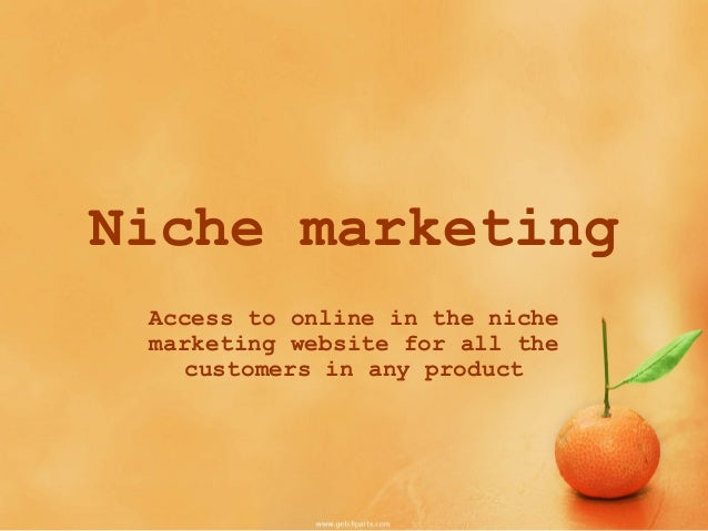 how to make niche marketing strategy