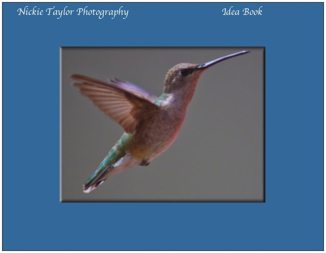 Nickie taylor photography idea book