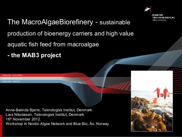 The MacroAlgaeBiorefinery - sustainableproduction of bioenergy carriers and high valueaquatic fish feed from macroalgae- t...