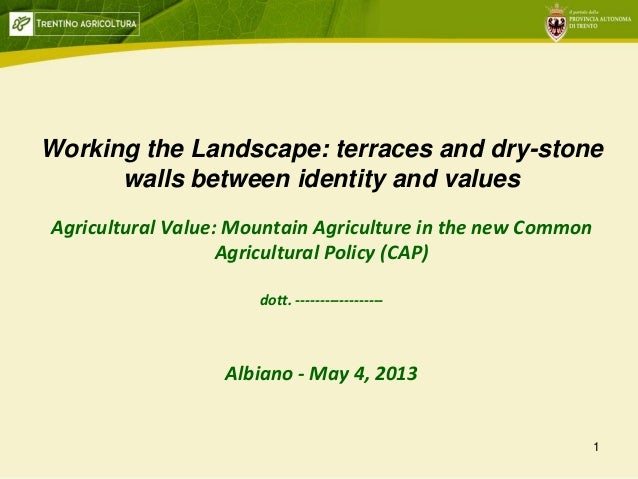 1Working the Landscape: terraces and dry-stonewalls between identity and valuesAgricultural Value: Mountain Agriculture in...