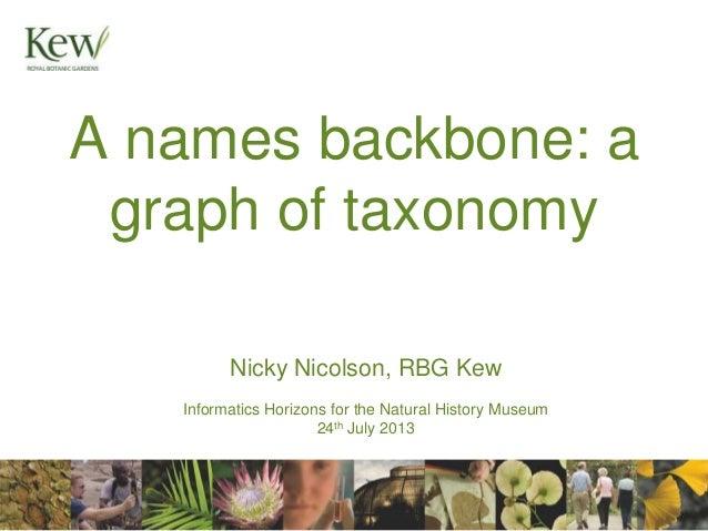 A names backbone - a graph of taxonomy