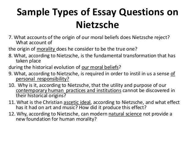 nietzsche essay on history First essay good and evil, good and bad 1 these english psychologists whom we have to thank for the only attempts up to this point to produce a history of the origins of morality—in themselves they serve up to us no small riddle.