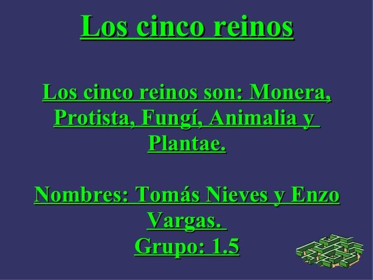 Los cinco reinos Los cinco reinos son: Monera, Protista, Fungí, Animalia y  Plantae. Nombres: Tomás Nieves y Enzo Vargas. ...