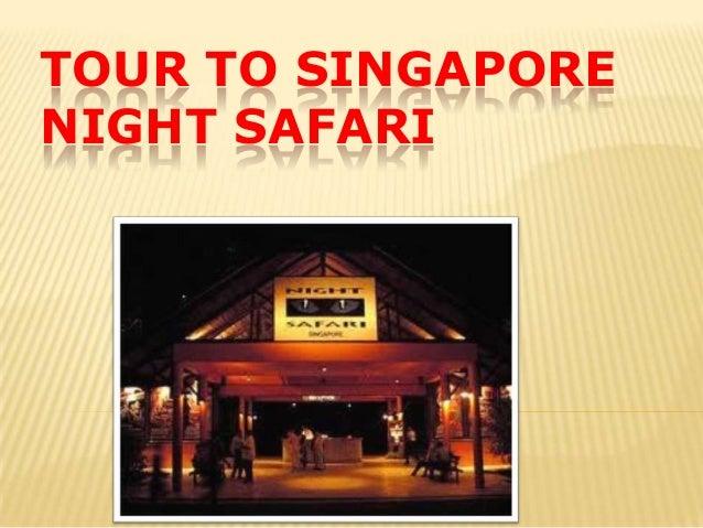 TOUR TO SINGAPORENIGHT SAFARI