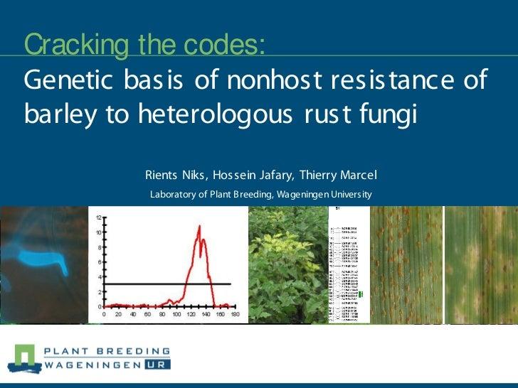Cracking the codes:Genetic basis of nonhost resistance ofbarley to heterologous rust fungi         Rients Niks, Hossein Ja...