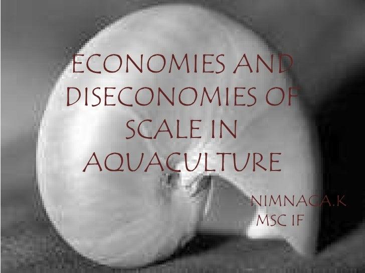 ECONOMIES ANDDISECONOMIES OF    SCALE IN AQUACULTURE           NIMNAGA.K           MSC IF