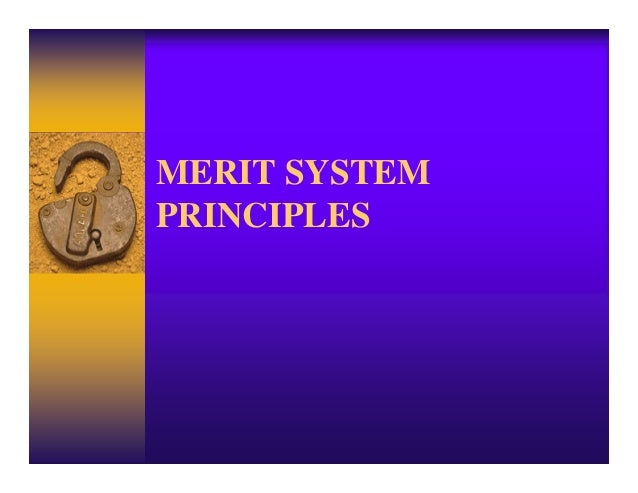 Nine merit principles