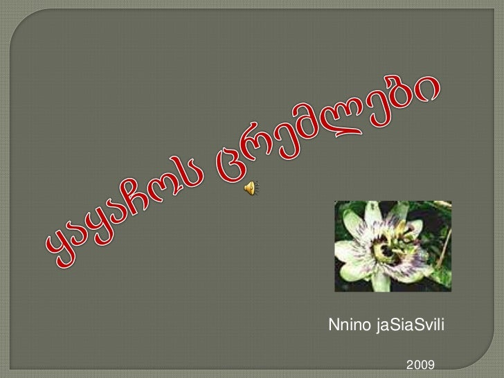 ყაყაჩოს ცრემლები<br />NninojaSiaSvili<br />2009 <br />