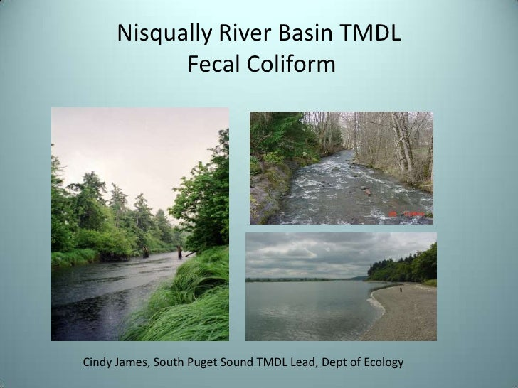 Nisqually River Basin TMDL Fecal Coliform<br />Cindy James, South Puget Sound TMDL Lead, Dept of Ecology<br />