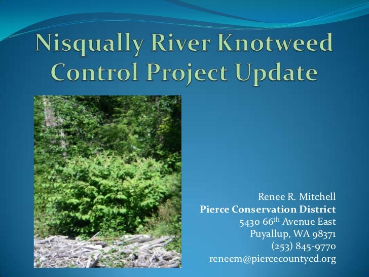 Nisqually River Knotweed Control Project Update<br />Renee R. Mitchell<br />Pierce Conservation District<br />  5430 66th ...