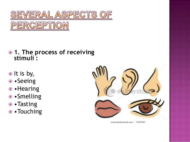 perceptual process The process a step-by-step guide to using perception data to drive school- wide decision-making note: steps marked with a are accompanied by one or more.