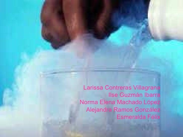 Larissa Contreras Villagrana Ilse Guzmán Ibarra Norma Elena Machado López Alejandra Ramos González Esmeralda Félix