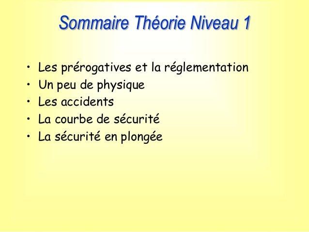 Sommaire Théorie Niveau 1 • Les prérogatives et la réglementation • Un peu de physique • Les accidents • La courbe de sécu...