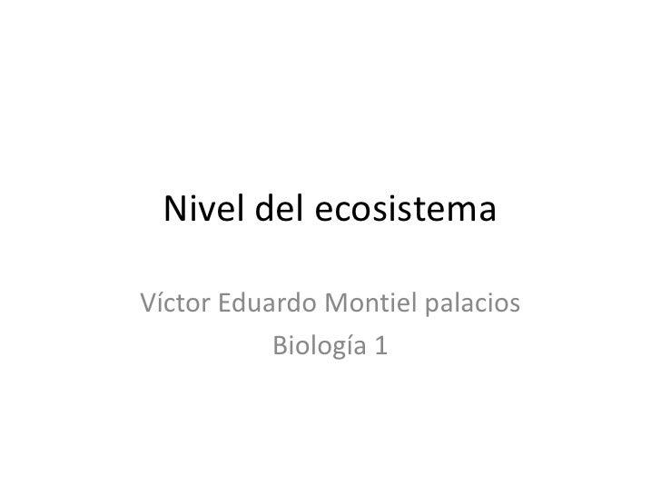 Nivel del ecosistema <br />Víctor Eduardo Montiel palacios <br />Biología 1<br />