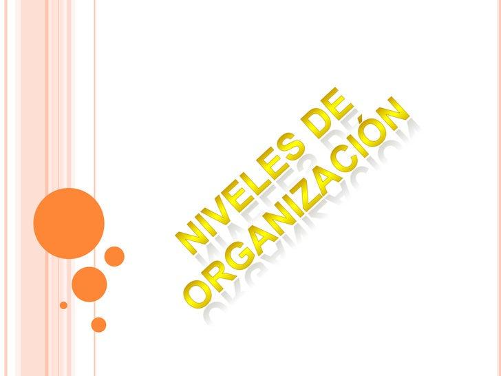 NIVELES DE ORGANIZACIÓN<br />
