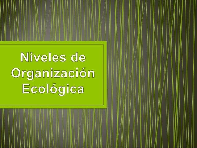  La   finalidad    de     la organización      ecológica es          analizar    las jerarquías o niveles de organización...