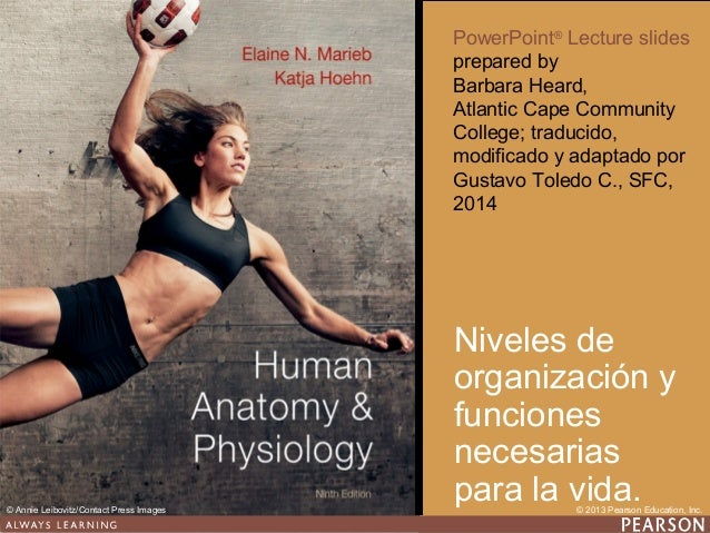 PowerPoint® Lecture slides prepared by Barbara Heard, Atlantic Cape Community College; traducido, modificado y adaptado po...