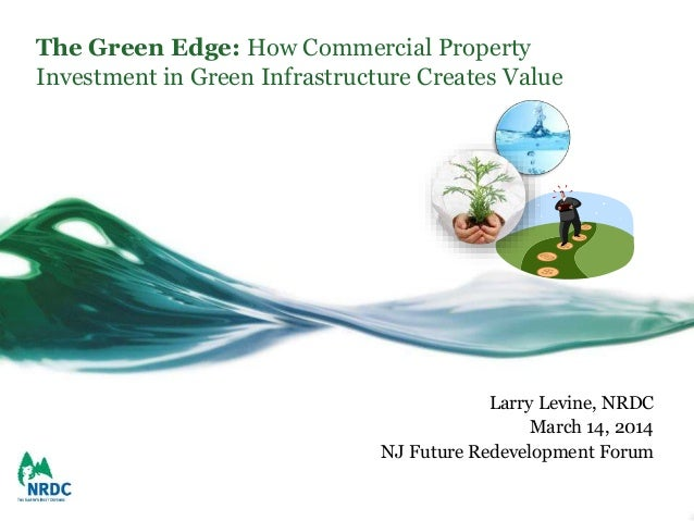 The Green Edge: How Commercial Property Investment in Green Infrastructure Creates Value Larry Levine, NRDC March 14, 2014...