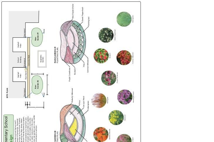 NJ: Somerville: Van Derveer Elementary School Rain Garden Design