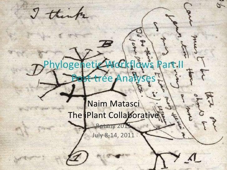 Phylogenetic Workflows Part II Post-tree Analyses Naim Matasci The iPlant Collaborative Botany 2011 July 8-14, 2011