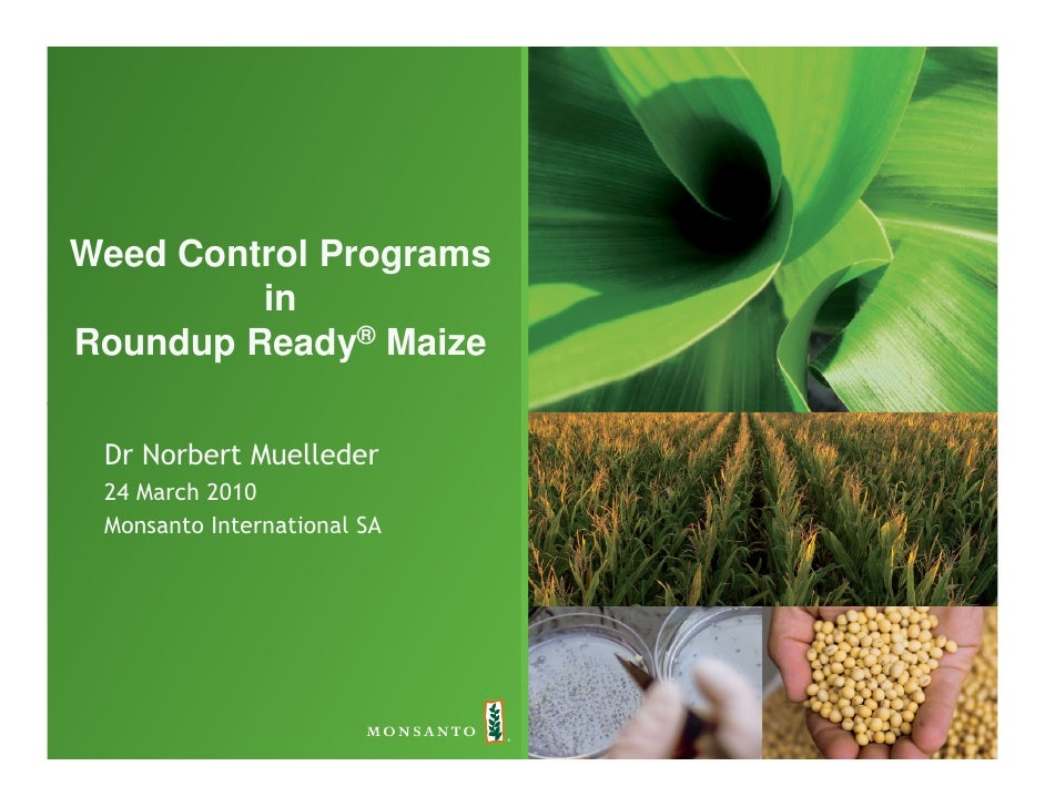 Weed Control Programs          in Roundup Ready® Maize   Dr Norbert Muelleder  24 March 2010  Monsanto International SA
