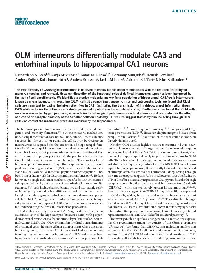 a r t ic l e s                                                   OLM interneurons differentially modulate CA3 and         ...