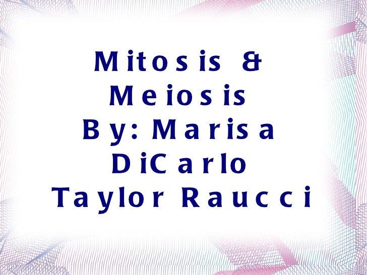 Mitosis & Meiosis By: Marisa DiCarlo Taylor Raucci