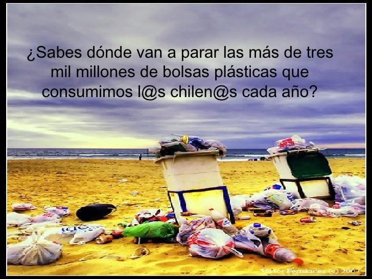 ¿Sabes dónde van a parar las más de tres mil millones de bolsas plásticas que consumimos l@s chilen@s cada año?