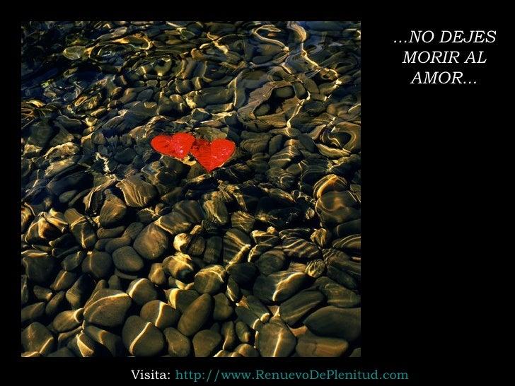 ...NO DEJES MORIR AL AMOR... Visita:  http:// www.RenuevoDePlenitud.com