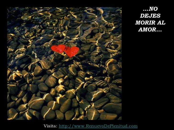 ...NO                                       DEJES                                      MORIR AL                           ...