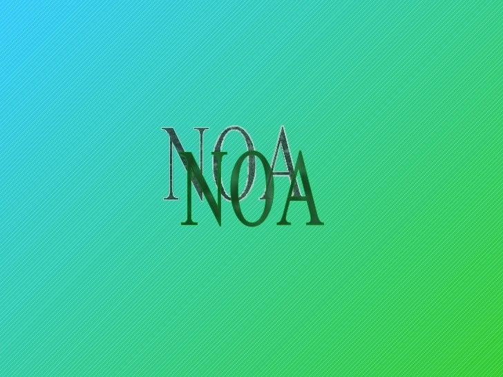 Noa 32