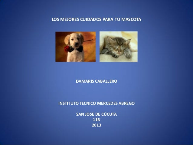 LOS MEJORES CUIDADOS PARA TU MASCOTA  DAMARIS CABALLERO  INSTITUTO TECNICO MERCEDES ABREGO  SAN JOSE DE CÚCUTA 11B 2013