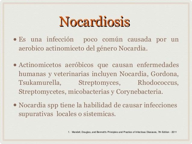 Nocardia infection: MedlinePlus Medical Encyclopedia