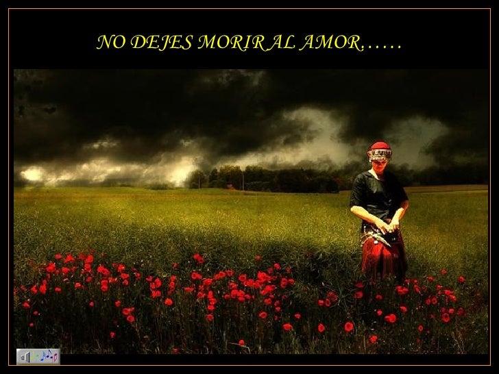 No dejes morir el amor