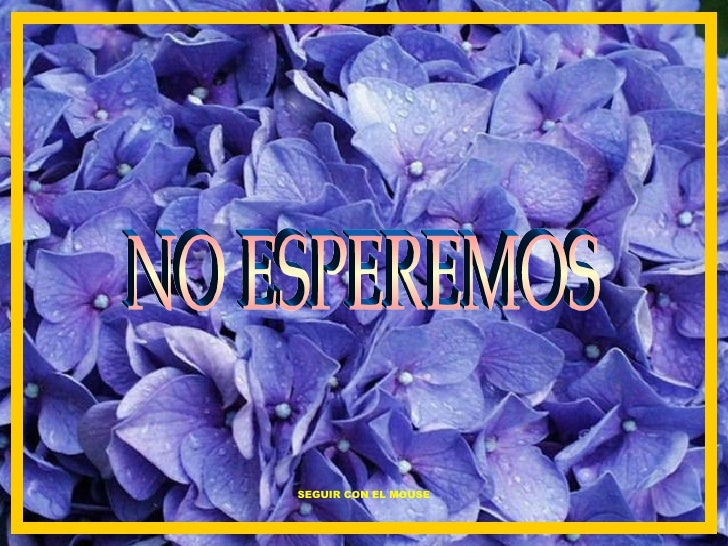 NO ESPEREMOS SEGUIR CON EL MOUSE