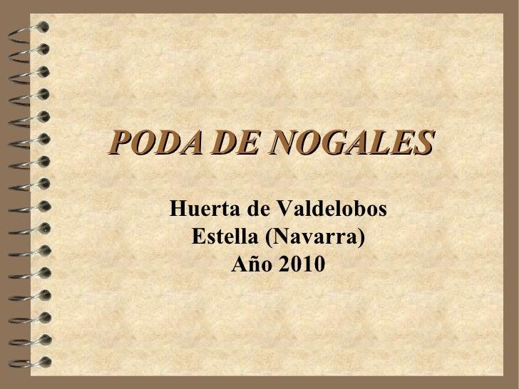Poda Nogales huerta 2010