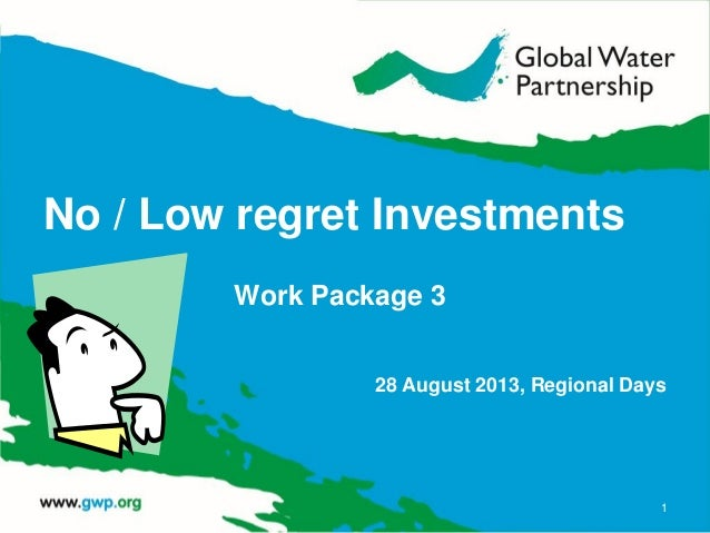 No / Low regret Investments Work Package 3 28 August 2013, Regional Days 1