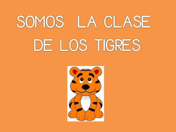Nombres clase tigres