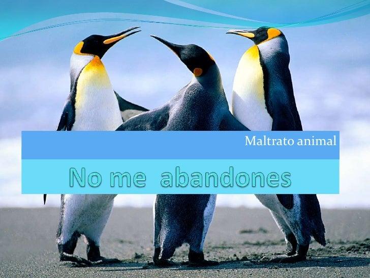 Maltrato animal<br />No me  abandones<br />