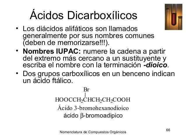 Los Acidos ácidos Dicarboxílicos• Los
