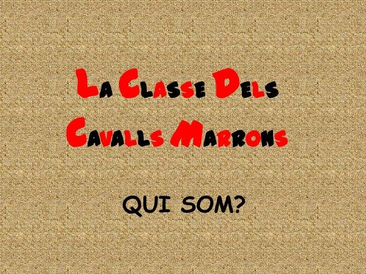 LA CLASSE DELSCAVALLS MARRONS   QUI SOM?