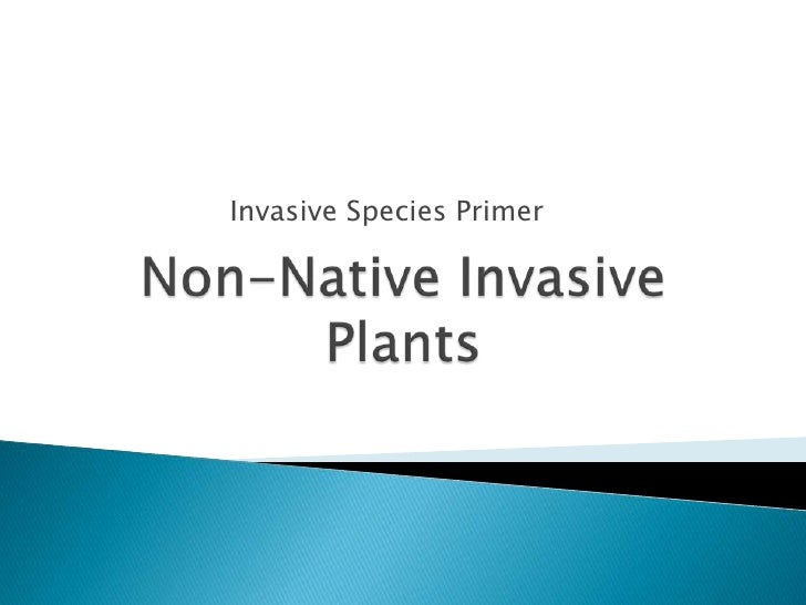 Invasive Species Primer