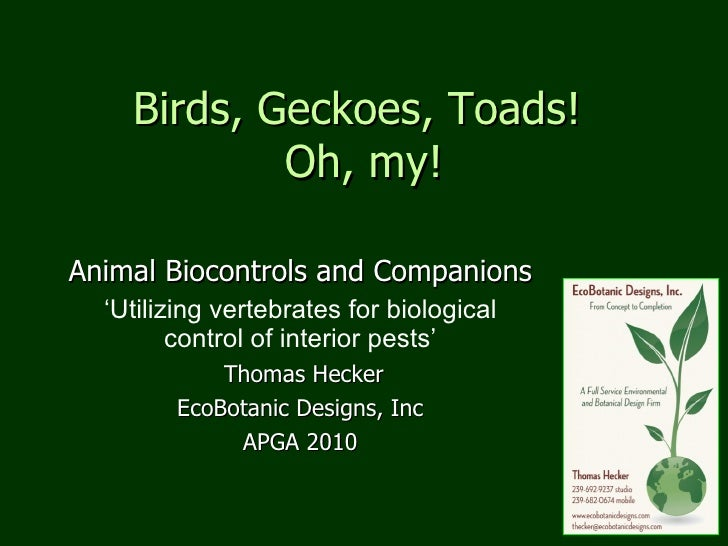 Birds, Geckoes, Toads!  Oh, my! Animal Biocontrols and Companions ' Utilizing vertebrates for biological control of interi...
