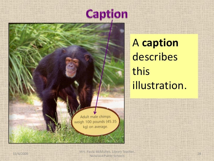 Captions In A Nonfiction Book Captions In A Nonfiction Book